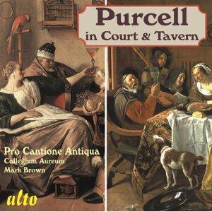 Pro Cantione Antiqua, Collegeum Aureum & Mark Brown 歌手頭像