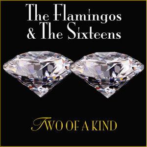 The Flamingos & The Sixteens 歌手頭像