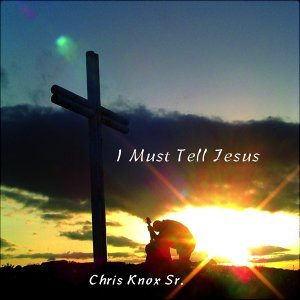 Chris Knox Sr. 歌手頭像