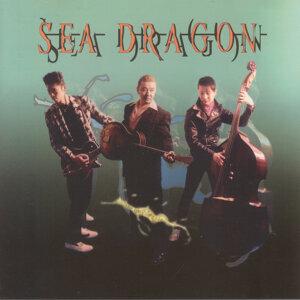 Sea Dragon 歌手頭像