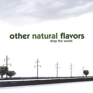 Other Natural Flavors 歌手頭像