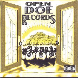 Open Doe Records 歌手頭像