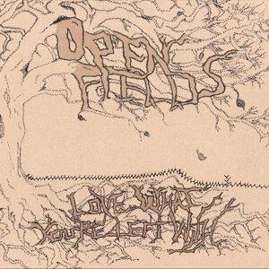 Open Fields 歌手頭像