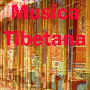 Musica Tibetana 歌手頭像