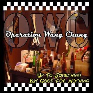 Operation Wang Chung 歌手頭像
