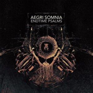 Aegri Somnia 歌手頭像