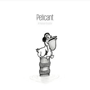 Pelicant 歌手頭像