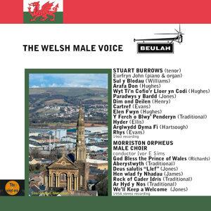 Stuart Burrows, Eurfryn John, Morriston Orpheus Male Choir 歌手頭像