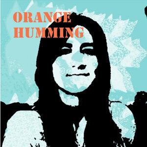 Orange Humming 歌手頭像