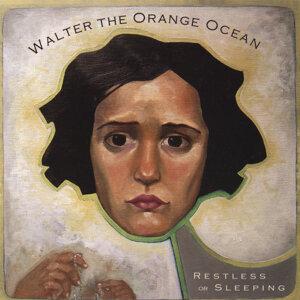 Walter the Orange Ocean 歌手頭像