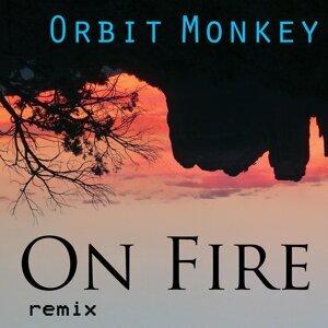 Orbit Monkey 歌手頭像