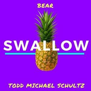 Todd Michael Schultz 歌手頭像