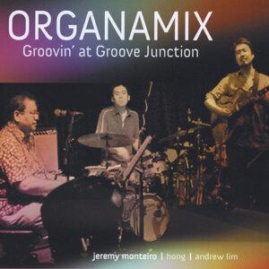 Organamix 歌手頭像