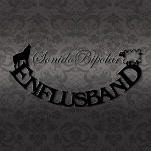 Enflusband 歌手頭像