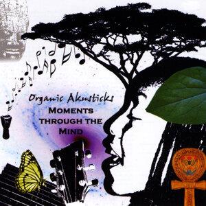 Organic Akusticks 歌手頭像