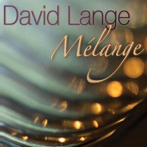 David Lange 歌手頭像