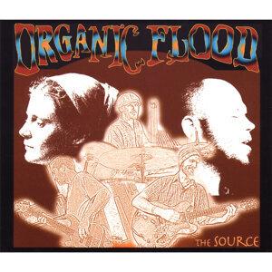 Organic Flood 歌手頭像