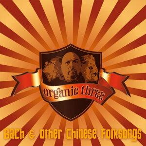 Organic Three 歌手頭像