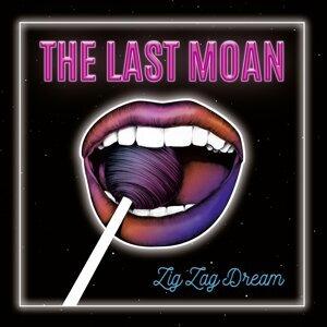The Last Moan 歌手頭像