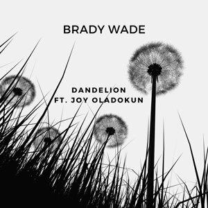 Brady Wade 歌手頭像