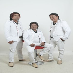 Elsi Trio 歌手頭像