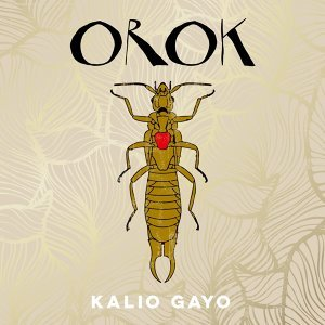 Kalio Gayo 歌手頭像