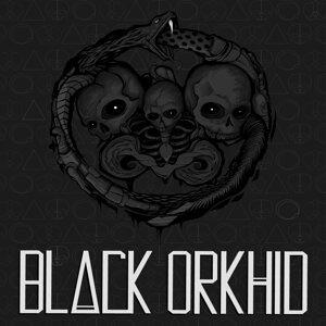 Black Orkhid 歌手頭像