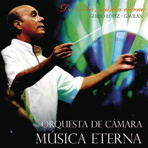 Guido López Gavilán y Su Orquesta de Cámara Música Eterna 歌手頭像