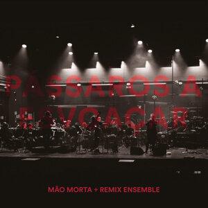 Mão Morta & Remix Ensemble 歌手頭像