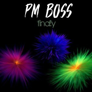 PM Boss 歌手頭像