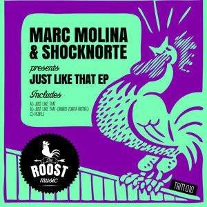 Marc Molina & Shocknorte 歌手頭像