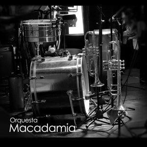 Orquesta Macadamia 歌手頭像
