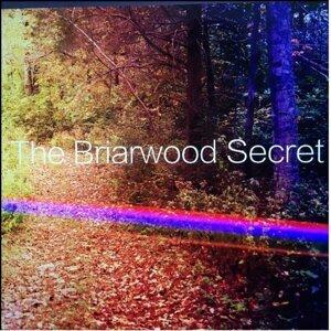 The Briarwood Secret 歌手頭像