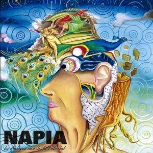 Napia 歌手頭像