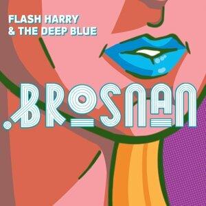 Brosnan 歌手頭像