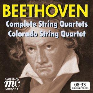 Colorado String Quartet 歌手頭像