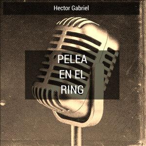 Hector Gabriel 歌手頭像