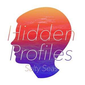 Hidden Profiles 歌手頭像