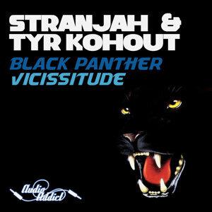 Tyr Kohout & Stranjah 歌手頭像