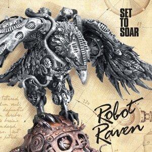 Robot Raven 歌手頭像