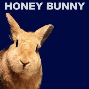 Oziriz ft Dura, Honey Bunny 歌手頭像