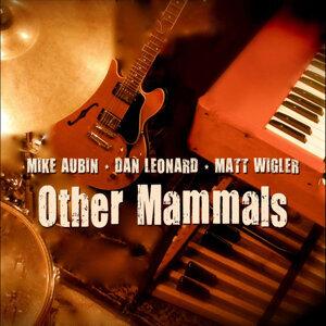 Other Mammals 歌手頭像