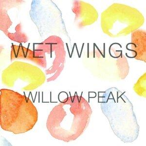Wet Wings 歌手頭像