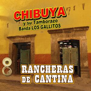 Chibuya y Su Tamborazo Banda Los Gallitos 歌手頭像