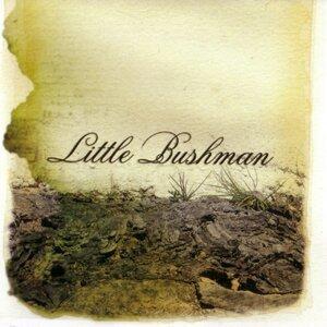 Little Bushman 歌手頭像