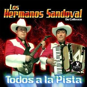Los Hermanos Sandoval De Calbuco 歌手頭像