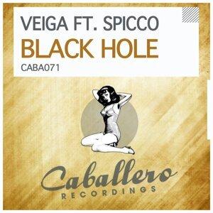 Veiga featuring Spicco 歌手頭像