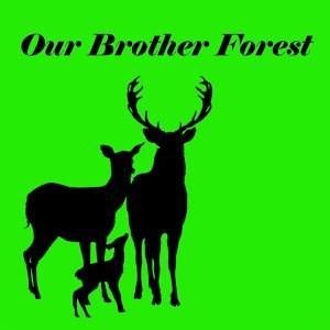 Our Brother Forest 歌手頭像