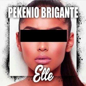 Pekenio Briganté 歌手頭像
