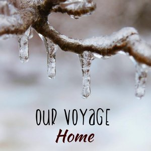 Our Voyage 歌手頭像